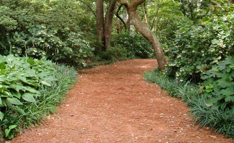 progettazione-creazione-giardini_00003