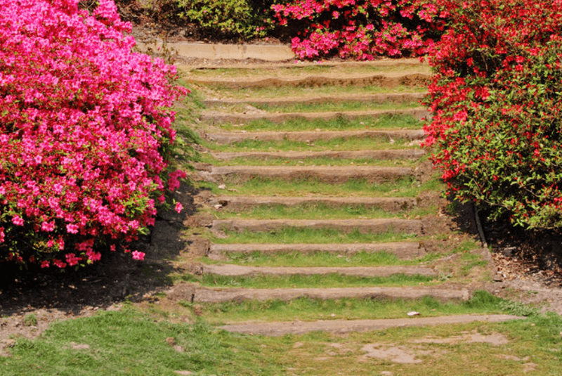 vialetti-camminamenti-sentieri-giardino-idee_00069