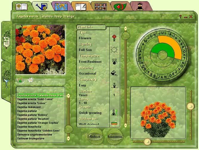 Progettare Il Giardino Software Gratis : Software progettazione giardini 3d gratis programmi progettazione