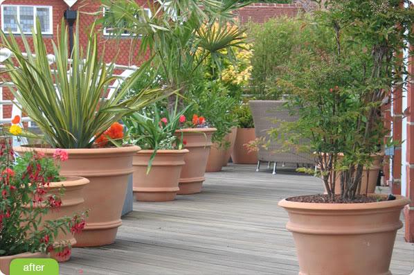 Aiutatemi a progettare il mio terrazzo - Un quadrato di giardino