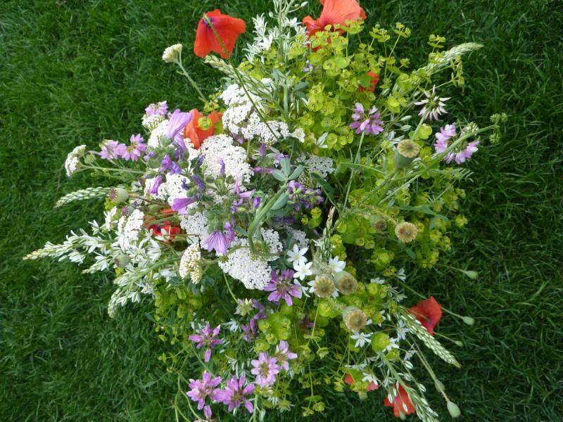 Un mazzo di fiori di campo estivi - Fiori da giardino estivi ...