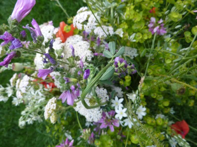 Un mazzo di fiori di campo estivi for Progetta il mio mazzo