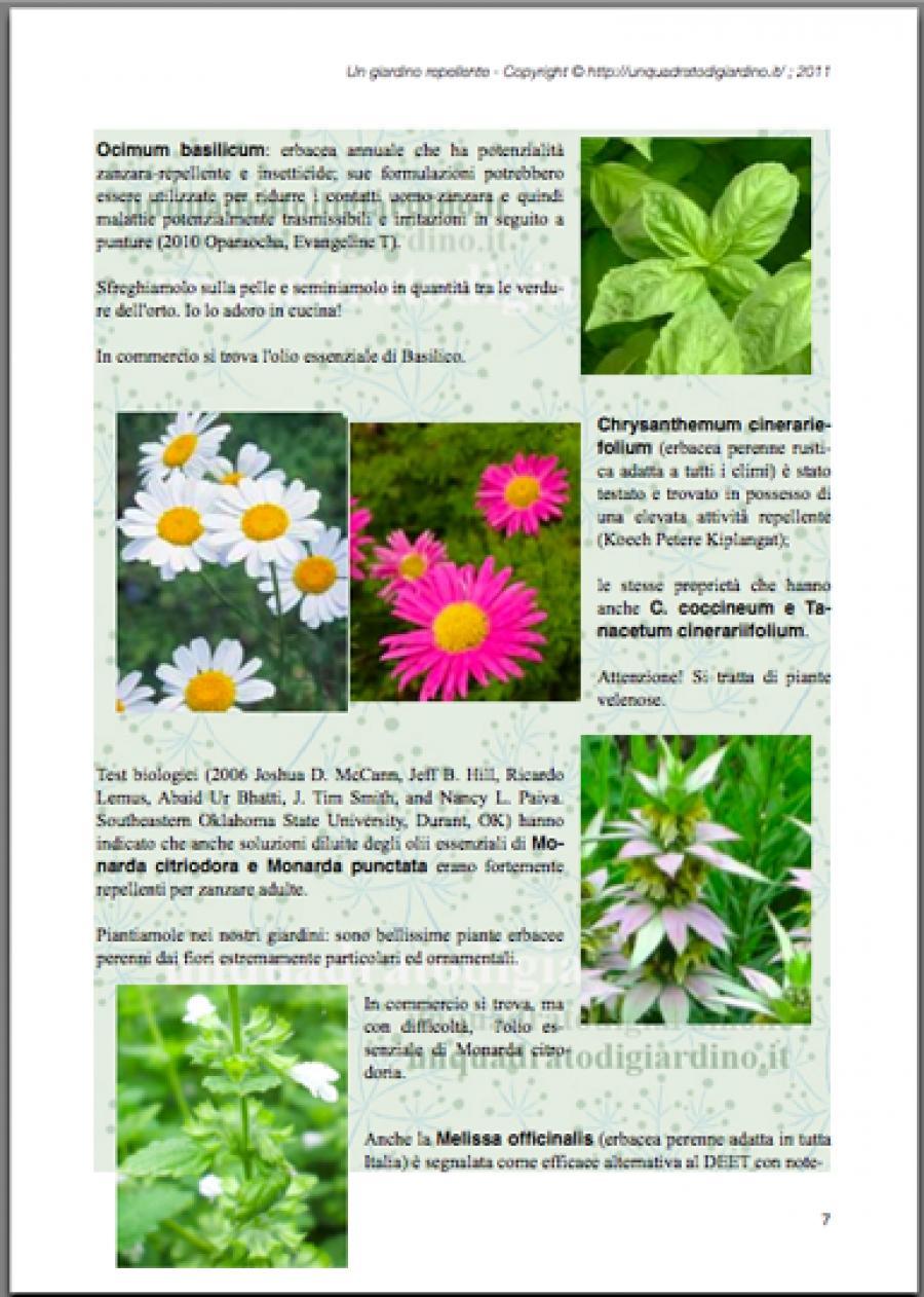 Ebook gratis un giardino repellente in potenza non attraente per le zanzare ma ricco di piante - Contro le zanzare in giardino ...
