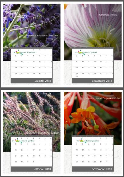 calendario_2018_pdf_anteprima.jpg