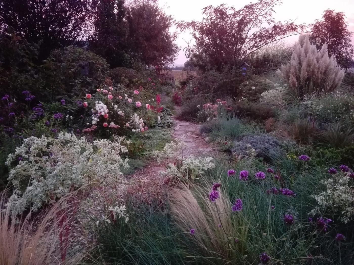 un_quadrato_di_giardino.jpg